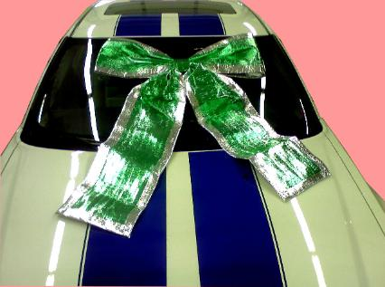 Green Shiney Bow