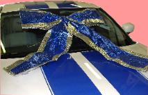 Blue Shiney Bow